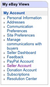 eBay My Views Seller Account