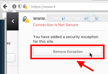 Firefox remove security exception