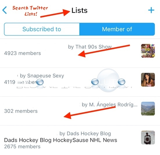 How to Search Twitter Lists