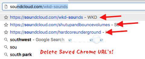 Delete Google Chrome Saved URL Mac