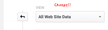 "How To: Change Google Analytics ""All Web Site Data"" View Names"