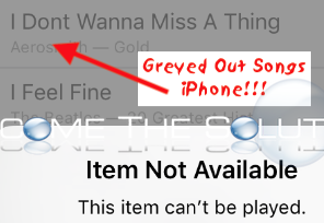 Fix: iPhone Music Grey Songs Won't Delete (Item Cannot Play)