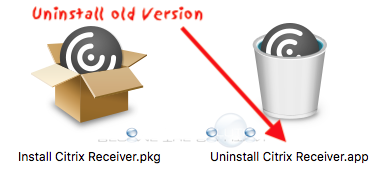 Fix: Citrix Receiver Disappearing Mouse Cursor
