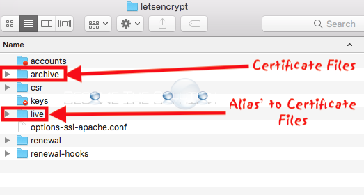 Lets encrypt certificate locations