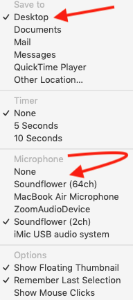 Mac screen recording options