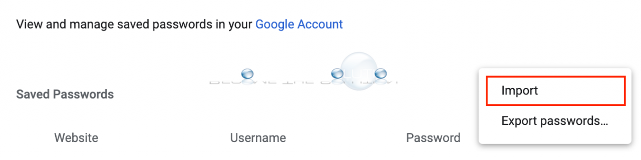 Google chrome password import option