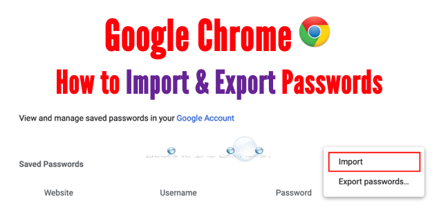 Export and Import Saved Google Chrome Passwords