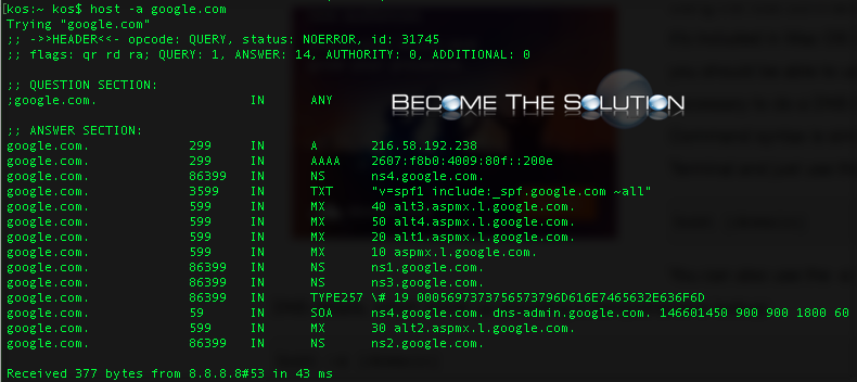 Mac terminal list host dns records google